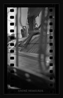 Film 135 montage Rollei sl 66 Film agfa orto 6 iso