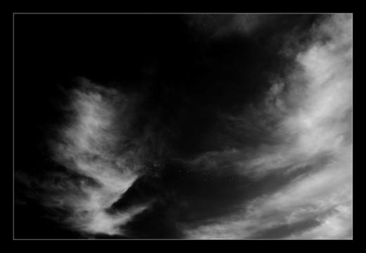 duiven-2-winter-gers-france-andre-hemelrijk