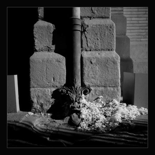 winter-toulouse-andre-hemelrijk-3