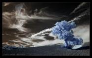 Bleu sky Gers France André Hemelrijk