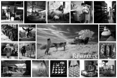 fromagers st Arailles 3 andré hemelrijk