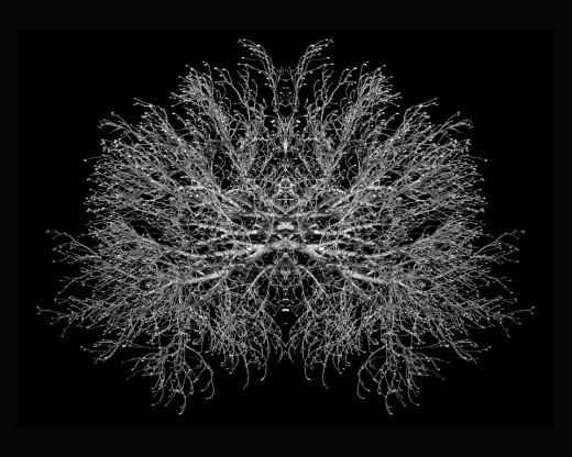 expo fractal 100x125 2018 André Hemelrijk