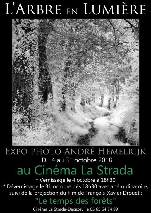 cinéma la Strada Decazeville expo l'arbre en Lumière André Hemelrijk