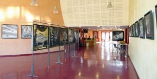 Cinéma La Strada-Decazeville expo l'arbre en lumiere André Hemelrijk oct 2018 (4)