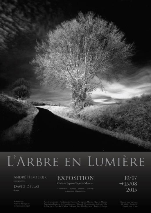 L'Arbre en Lumière Marciac 2015 Photographies André Hemelrijk Dessins David Dellas