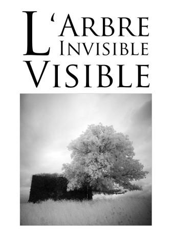 L'arbre invisible visible marciac 2019