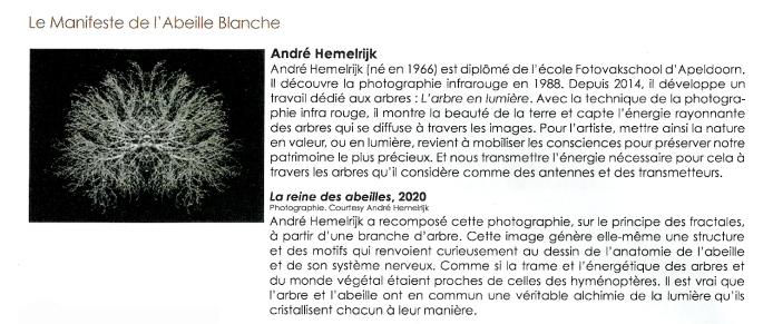 L'Abeille Blanche Le Parvis centre d'art contempotain Ibos Tarbes (6) uitsnede