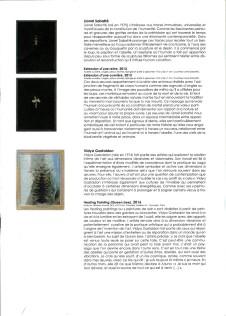L'Abeille Blanche Le Parvis centre d'art contempotain Ibos Tarbes (7) (Medium)