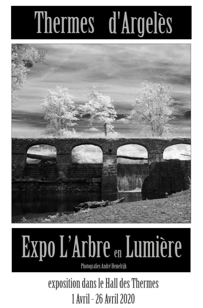 exposition dans le Hall des Thermes d'argeles l'arbre en lumiere André Hemelrijk