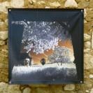 100x100 infrarouge couleur André Hemelrijk (1) (Medium)