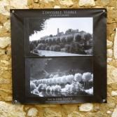 100x100 infrarouge noir blanc André Hemelrijk (1) (Medium)