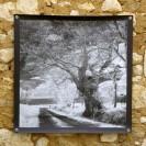 100x100 infrarouge noir blanc André Hemelrijk (11) (Medium)