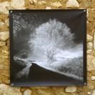 100x100 infrarouge noir blanc André Hemelrijk (12) (Medium)