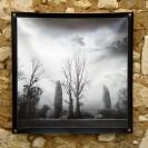 100x100 infrarouge noir blanc André Hemelrijk (14) (Medium)