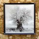 100x100 infrarouge noir blanc André Hemelrijk (16) (Medium)