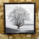 100x100 infrarouge noir blanc André Hemelrijk (18) (Medium)