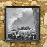 100x100 infrarouge noir blanc André Hemelrijk (2) (Medium)