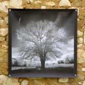 100x100 infrarouge noir blanc André Hemelrijk (4) (Medium)
