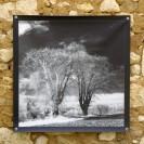 100x100 infrarouge noir blanc André Hemelrijk (6) (Medium)