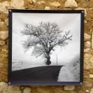 100x100 infrarouge noir blanc André Hemelrijk (7) (Medium)