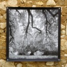 100x100 infrarouge noir blanc André Hemelrijk (8) (Medium)