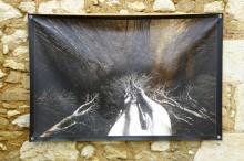 100x150 infrarouge couleur André Hemelrijk (2) (Medium)