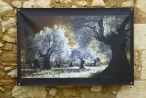 100x150 infrarouge couleur André Hemelrijk (3) (Medium)