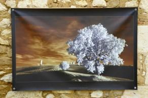 100x150 infrarouge couleur André Hemelrijk (5) (Medium)