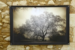 100x150 infrarouge coulour retro André Hemelrijk (1) (Medium)