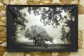 100x150 infrarouge coulour retro André Hemelrijk (2) (Medium)
