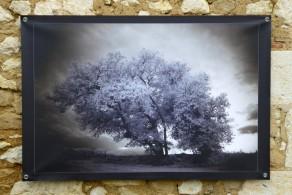 100x150 infrarouge coulour retro André Hemelrijk (3) (Medium)