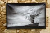 100x150 infrarouge noir blanc André Hemelrijk (1) (Medium)
