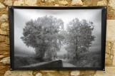 100x150 infrarouge noir blanc André Hemelrijk (12) (Medium)