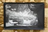 100x150 infrarouge noir blanc André Hemelrijk (13) (Medium)