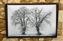100x150 infrarouge noir blanc André Hemelrijk (15) (Medium)