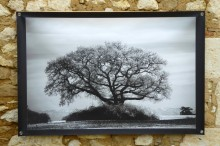 100x150 infrarouge noir blanc André Hemelrijk (16) (Medium)