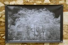 100x150 infrarouge noir blanc André Hemelrijk (18) (Medium)