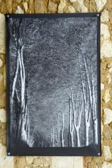100x150 infrarouge noir blanc André Hemelrijk (21) (Medium)