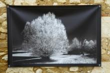 100x150 infrarouge noir blanc André Hemelrijk (22) (Medium)