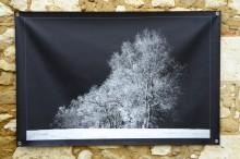 100x150 infrarouge noir blanc André Hemelrijk (23) (Medium)