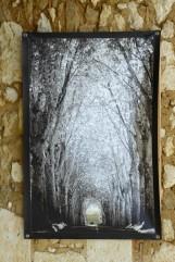 100x150 infrarouge noir blanc André Hemelrijk (4) (Medium)