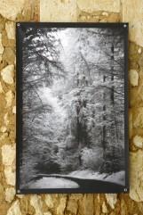 100x150 infrarouge noir blanc André Hemelrijk (7) (Medium)