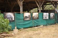 expo plein air 1-2 aout Bernadon 2020 (3)