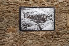 Flagnac Aveyron 2020 L'Arbre en Lumiere 44 photos (3)