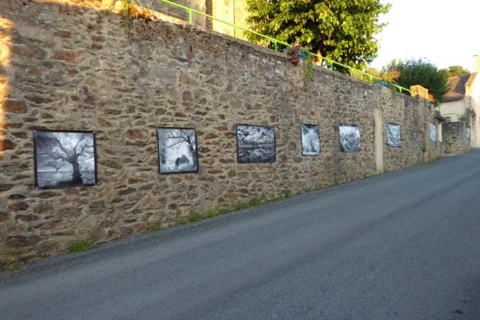 Flagnac Aveyron 2020 L'Arbre en Lumiere 44 photos (4)